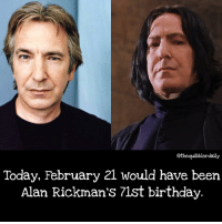 Birthday, Books, and Gryffindor: othequibblerdaily  Today, February 21 would have been  Alan Rickman's 71st birthday Which book do you think had the best Snape moments? . . . . . . . . __________________________________________________ __________________________________________________ hogwartsishome harrypotter potter potterhead wizardingworld wizardingworldofharrypotter gryffindor hufflepuff slytherin ravenclaw hogwarts hogwartsismyhome hermione sharethemagic hermionegranger ronweasley lordvoldemort voldemort harrypotterfacts hpfacts snape dracomalfoy nevillelongbottom hp jkrowling fandom emmawatson fantasticbeasts fbawtft