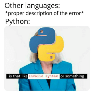 Its hard for any programmer to switch to Python: Other languages:  *proper description of the error*  Python:  teeyapa  is that like invalid syntax or something Its hard for any programmer to switch to Python