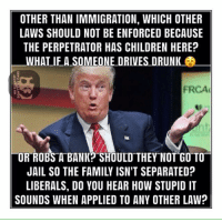 Children, Drunk, and Memes: OTHER THAN IMMIGRATION, WHICH OTHER  LAWS SHOULD NOT BE ENFORCED BECAUSE  THE PERPETRATOR HAS CHILDREN HERE?  WHAT IF A SOMEONE DRIVES DRUNK  FRCA  LOR ROBS A BANK? SHOULD THEY NOT GO TO  LIBERALS, DO YOU HEAR HOW STUPID IT  SOUNDS WHEN APPLIED TO ANY OTHER LAW? (MF) #EnforceTheLaw  #BuildTheWall #SanctuaryCity