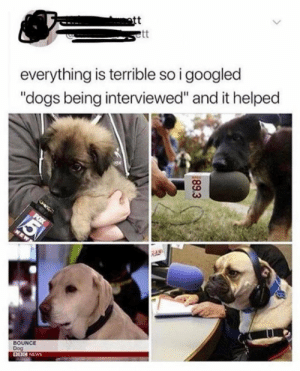 """ott: ott  everything is terrible so i googled  """"dogs being interviewed"""" and it helped  BOUNCE  Dog  DOG NEWS  89.3"""