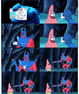 [META] Couldnt find a blank template for this anywhere so screen capped it and made one myself. Have fun: ottom  fification  Patrick Sta  120 Conch St. Bkni Bomom  359723  PATricK  StaR [META] Couldnt find a blank template for this anywhere so screen capped it and made one myself. Have fun
