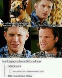 That doggo was wrong tho styx rocks 😂 ---------------------- jensenackles deanwinchester winchester supernatural supernaturalfandom spn spnfamily alwayskeepfighting youarenotalone jaredpadalecki samwinchester castiel castielangelofthelord mishacollins spnfandom mishaporn destiel cockles teamfreewill dean sam cas rowena ruthconnel crowley supernaturalfunny supernaturaltumblr: ou call this classic rock? Next thin  you know, theyu be playing Sty  And Dennis DeYoung? Apunkj  Dennis De Young'snot a punk  Dennis DeYoung's nota punk  wny are youarguing  with a dog about Styx?  He's MrRobofo bitch  livebloggingmydescentintomadness:  hellchesters:  Very passionate conversation wth a dog  This is a serious show That doggo was wrong tho styx rocks 😂 ---------------------- jensenackles deanwinchester winchester supernatural supernaturalfandom spn spnfamily alwayskeepfighting youarenotalone jaredpadalecki samwinchester castiel castielangelofthelord mishacollins spnfandom mishaporn destiel cockles teamfreewill dean sam cas rowena ruthconnel crowley supernaturalfunny supernaturaltumblr