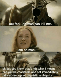 Not What I Meant: ou fool. No man can kill me.  I am no man.  ok but you know that's not what I meant  can you be charitable and not immediately  take advantage of linguistic ambiguity