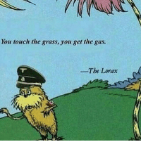 Bad, Memes, and Smh: ou touch the grass, you get the gas  The Lorax U guys say I'm the bad guy because I hate trees but look at this smh we 50 away from 40k so Yuh and follow my backup @oofhareair just incase I get deleted