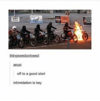 All the other riders will pee their pants and be slowed down. Good thinking! - - - fun funny pun puns punny meme memes fun life goals lit pics beach humor cleanmeme joke jokes laugh laughs giantmegasponge sponge4days laugh laughs haha love lol cashmeousside fire joke clean me fail literally: OUAY  thingswedontneed:  anus:  off to a good start  intimidation is key  MOO!  RAC All the other riders will pee their pants and be slowed down. Good thinking! - - - fun funny pun puns punny meme memes fun life goals lit pics beach humor cleanmeme joke jokes laugh laughs giantmegasponge sponge4days laugh laughs haha love lol cashmeousside fire joke clean me fail literally
