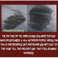 Memes, Photoshop, and Sorry: oungolyed daily  THE PICTURE OF THE HOOKISLAMD SEA MOMSTER WAS  TAKEM  OM DECEMBER 12 1964 ALTHOUGH PEOPLE WOULD SAY  TUIS IS pHOTOSHOPED, BUT PHOTOSHOP DID noT EXIST  THIS YEAR TILL THIS PRESEMT DAY, THIS STILL REMAMS  SOLVED I'm so so so so sorry I haven't posted in 3 days! I've been away and all over the place lately. I'm going to resume posting daily again starting now so turn on my post notifications 💕
