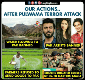 #Pulwama: OUR ACTIONS..  AFTER PULWAMA TERROR ATTACK  WATER FLOWING TO  PAK BANNED  PAK ARTISTS BANNED  FARMERS REFUSED TOCITIZENS DONATED CRORES  SEND GOODS TO PAK OF RS. TO MARTYRS' FAMILY #Pulwama
