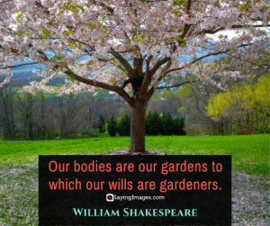 Bodies , Shakespeare, and Ally: Our bodies are our gardens to  which our wills are gardeners.  SayingImages.com  WILLIAM SHAKESPEARE 30 Self Care Quotes on Loving Your Greatest Ally: Yourself #sayingimages #selfcarequotes #quotes #inspirationalquotes