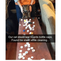 omg so much treasure!!! ✨✨follow @x__antisocial_butterfly__x for more 🐯 @x__antisocial_butterfly__x: Our cat steals and hoards bottle caps.  Found his stash while cleaning... omg so much treasure!!! ✨✨follow @x__antisocial_butterfly__x for more 🐯 @x__antisocial_butterfly__x