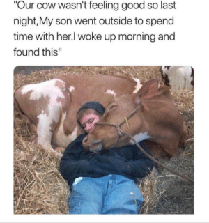 "Love, Good, and Time: ""Our cow wasn't feeling good so last  night,My son went outside to spend  time with her.I woke up morning and  found this"" Love this care level"