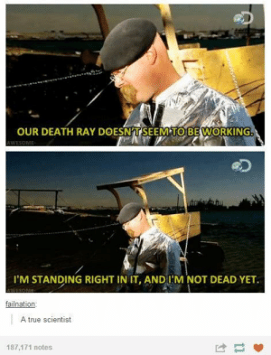 True, Death, and Science: OUR DEATH RAY DOESN'TSEEM TO BEWORKING.  I'M STANDING RIGHT IN IT, ANDI'M NOT DEAD YET  Inat  A true scientist  187,171 notes Science