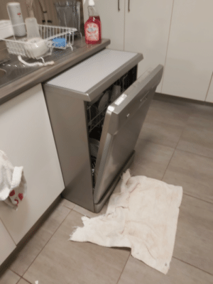 Our dishwasher leaked and got all in the wiring. There goes 5 hours of gaming down the drain.: Our dishwasher leaked and got all in the wiring. There goes 5 hours of gaming down the drain.