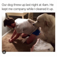 A YO ALL MY BEST FRIENDS ARE DOGS ON THE REAL THO (IG: @defamerican): Our dog threw up last night at 4am. He  kept me company while l cleaned it up. A YO ALL MY BEST FRIENDS ARE DOGS ON THE REAL THO (IG: @defamerican)