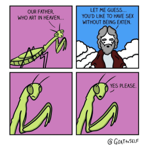 Heaven, Sex, and Guess: OUR FATHER,  WHO ART IN HEAVEN...  LET ME GUESS  YOU'D LIKE TO HAVE SEX  WITHOUT BEING EATEN  YES PLEASE.  GATtOSELF Slaying Mantis