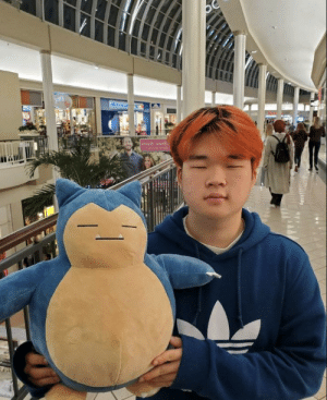 Friends, Thought, and Got: Our friend got a Snorlax plush and we thought it looked like one of our other friends.