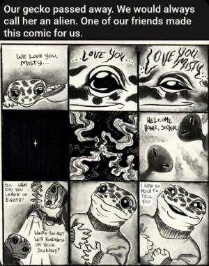 awesomacious:  This is so cute :'): Our gecko passed away. We would always  call her an alien. One of our friends made  this comic for us.  You  20VE YOU3OVE  WE LOVE you,..LOVE YOu  WE LOVE You,  MISTY...  HELCOME  HOME, SISTER  So... WHAT  DID YOU  LEARN OF  EARTH?  I HAVE SO  MucH TO  TELL  You.  WERE YOU MET  WITH KINDNESS  ON YOUR  JOURNEY? awesomacious:  This is so cute :')