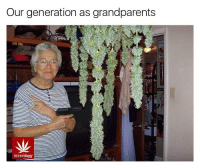 Weed, Marijuana, and Generators: Our generation as grandparents  stonerdays