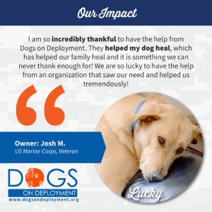 Dogs, Family, and Memes: Our Impact  I am so incredibly thankful to have the help from  Dogs on Deployment. They helped my dog heal, which  has helped our family heal and it is something we can  never thank enough for! We are so lucky to have the help  from an organization that saw our need and helped us  tremendously!  Owner: Josh M.  US Marine Corps, Veteran  D GS  Qucry  ON DEPLOYMENT  www.dogsondeployment.org #OurImpact: over $624,370 granted to military families and 1,699 military pets fostered.  #OurMission: Give military members peace of mind concerning their pets during their service commitments by providing them with the ability to find people and resources able to help them.  #Donate at www.bit.ly/dod-donate