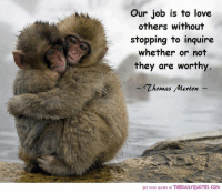 Our job is to love  others without  sfopping fo inquire  whether or not  they are worthy.  Thomas Merton  get more quotes at THEDAILYQUOTES.COM Our job is to love others without stopping to inquire whether or not they are worthy