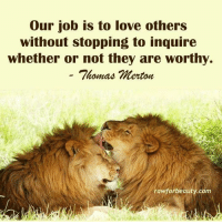 """Our job is to love others  without stopping to inquire  Whether or not they are worthy.  Thomas Merton  rawforbeauty com """"Our job is to love other without stopping to inquire whether or not they are worthy."""" - Thomas Merton www.rawforbeauty.com"""