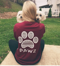 Our maroon tribal tee is almost sold out! Get it before it's gone at PawzShop.com 🐾: Our maroon tribal tee is almost sold out! Get it before it's gone at PawzShop.com 🐾