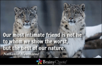 Our most intimate friend is not he to whom we show the worst, but the best of our nature. - Nathaniel Hawthorne http://www.brainyquote.com/quotes/authors/n/nathaniel_hawthorne.html: Our most intimate friend is not he  to whom we show the worst  but the best of our nature.  Nathaniel Hawthorne  Brainy  Quote Our most intimate friend is not he to whom we show the worst, but the best of our nature. - Nathaniel Hawthorne http://www.brainyquote.com/quotes/authors/n/nathaniel_hawthorne.html