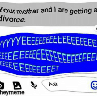 Meme, Memes, and Divorce: our mother and l are getting a  divorce.  heymeme More memes from the meme man
