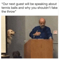 "Fake, Tumblr, and Blog: ""Our next guest will be speaking about  tennis balls and why you shouldn't fake  the throw"" <p><a href=""http://memehumor.net/post/175451414862/it-should-be-illegal"" class=""tumblr_blog"">memehumor</a>:</p>  <blockquote><p>""It should be illegal""</p></blockquote>"