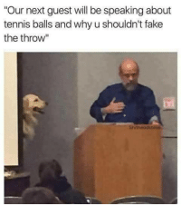 """Fake, Tennis, and Next: """"Our next guest will be speaking about  tennis balls and why u shouldn't fake  the throw""""  Shitheadsteve A ruff one"""