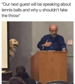 "Dont fake the throw: ""Our next guest will be speaking about  tennis balls and why u shouldn't fake  the throw""  Shitheadsteve Dont fake the throw"