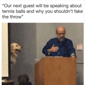 """It should be illegal by cheeki_hamiltrash FOLLOW HERE 4 MORE MEMES.: """"Our next guest will be speaking about  tennis balls and why you shouldn't fake  the throw"""" It should be illegal by cheeki_hamiltrash FOLLOW HERE 4 MORE MEMES."""