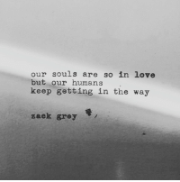Love, Grey, and Zack &: our souls are so in love  but our humans  keep getting in the way  zack grey