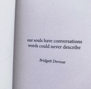Describe: our souls have conversations  words could never describe  Bridgett Devoue
