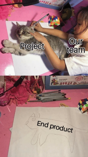 Project, Team, and Product: Our  team  Project  End product Every damn project