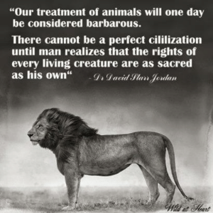 """Animals, Memes, and Living: """"Our treatment of animals will one day  be considered barbarous  There cannot be a perfect cililization  until man realizes that the rights of  every living creature are as sacred  as his own"""" ,Tarid lar Jorda"""