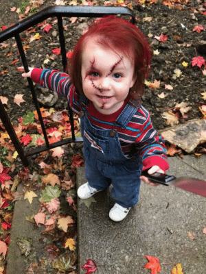 Our two year old daughter. Because when big sis wants to dress up as Jason Voorhees, what better side kick than Chucky? via /r/funny https://ift.tt/2qmQOcA: Our two year old daughter. Because when big sis wants to dress up as Jason Voorhees, what better side kick than Chucky? via /r/funny https://ift.tt/2qmQOcA