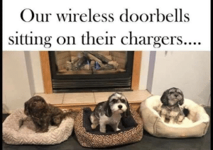 Memes, Chargers, and 🤖: Our wireless doorbells  sitting on their chargers...