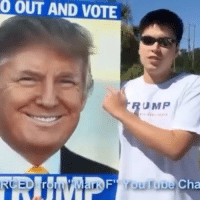 Hype, Wings, and Conservative: OUT AND VOTE  UMP  Cha JUST A LITTLE HYPE! HIGH ENERGY! Thanks to @theconservativeapproach for sending this in! highenergy memefarming trumpmemes liberals libbys democraps liberallogic liberal ccw247 conservative constitution presidenttrump nobama stupidliberals merica america stupiddemocrats donaldtrump trump2016 patriot trump yeeyee presidentdonaldtrump draintheswamp makeamericagreatagain trumptrain maga Add me on Snapchat and get to know me. Don't be a stranger: thetypicallibby Partners: @tomorrowsconservatives 🇺🇸 @too_savage_for_democrats 🐍 @thelastgreatstand 🇺🇸 @always.right 🐘 TURN ON POST NOTIFICATIONS! Make sure to check out our joint Facebook - Right Wing Savages Joint Instagram - @rightwingsavages Joint Twitter - @wethreesavages Follow my backup page: @the_typical_liberal_backup