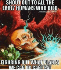 """Memes, All The, and Who: OUT  SHOUT TO ALL THE  EARLY HUMANS WHO DIED  GREALIZATION MATION  FIGURING OUT WHAT  PLANTS  WE CAN ORCANTEAT <p>Shoutout to the adventurous ones via /r/memes <a href=""""https://ift.tt/2GwqpDX"""">https://ift.tt/2GwqpDX</a></p>"""