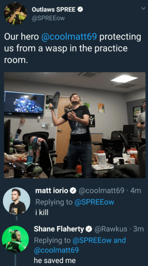 houston-outlaws:  a lot is happening in the outlaws practice room rn: Outlaws SPREE  aSPREEow  Our hero @coolmatt69 protecting  us from a wasp in the practice  room  HOUS  lin   matt iorio @coolmatt69 4m  Replying to @SPREEow  i kill   Shane Flaherty@Rawkus  Replying to @SPREEow and  @coolmatt69  he saved me  3m houston-outlaws:  a lot is happening in the outlaws practice room rn
