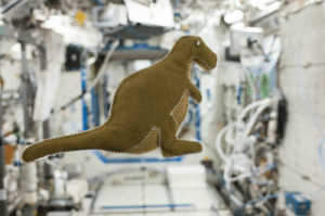 outofcontextelderscrolls: spaceexp:  Dinosaur toy made aboard the International Space Station. Sept 2013 via reddit   Why does this look like I can spin is around to look at it from different angles like it's in my inventory in a Bethesda game? : outofcontextelderscrolls: spaceexp:  Dinosaur toy made aboard the International Space Station. Sept 2013 via reddit   Why does this look like I can spin is around to look at it from different angles like it's in my inventory in a Bethesda game?