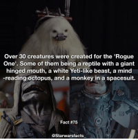 Not 100% on all their names just yet so my descriptions will have to do. starwarsfacts: Over 30 creatures were created for the 'Rogue  One'. Some of them being a reptile with a giant  hinged mouth, a white Yeti-like beast, a mind  -reading octopus, and a monkey in a spacesuit.  Fact #75  @Starwarsfacts Not 100% on all their names just yet so my descriptions will have to do. starwarsfacts