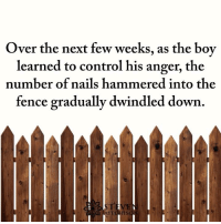 Memes, Control, and Nails: Over the next few weeks, as the boy  learned to control his anger, the  number of nails hammered into the  fence gradually dwindled down Father and son
