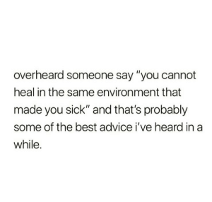 "Someone Say: overheard someone say ""you cannot  heal in the same environment that  made you sick"" and that's probably  some of the best advice i've heard in a  while."