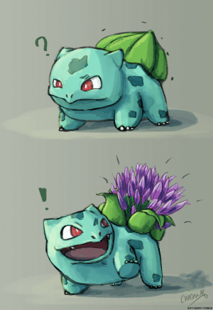 Bulbasaur, Butt, and Target: OW  BUTT-BERR3.TUMBLR butt-berry:  butt-berry:  butt-berry:  butt-berry:  butt-berry:  It's Bulbasaur blooming season   Lots of variety this year!   A late bloomer!   Water-lily Bulbasaur catching up on the latest gossip at the lake   Wow, looks like thing are getting serious between hibiscus and fuchsia!