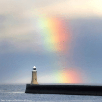 Memes, Images, and Rainbow: Owen Humphreys/PA Wire via AP Images A rainbow can be seen over a Tynemouth lighthouse in Northumberland.