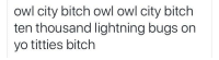 Bitch, Titties, and Yo: owl city bitch owl owl city bitch  ten thousand lightning bugs on  yo titties bitch Meirl