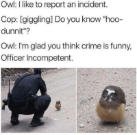 """Crime, Funny, and Memes: Owl: I like to report an incident.  Cop: [giggling] Do you know """"hoo-  dunnit""""?  Owl: I'm glad you think crime is funny,  Officer Incompetent. <p>Crime is never funny via /r/memes <a href=""""http://ift.tt/2Iya6Ue"""">http://ift.tt/2Iya6Ue</a></p>"""