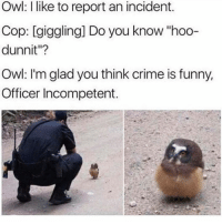 "Crime, Funny, and Lol: Owl: I like to report an incident.  Cop: [giggling] Do you know ""hoo-  dunnit""?  Owl: I'm glad you think crime is funny,  Officer Incompetent. lol"
