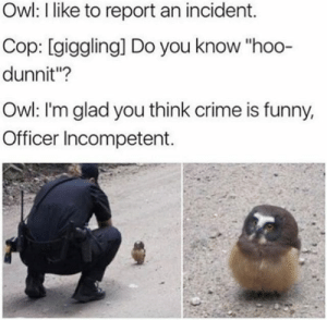 """Crime, Funny, and Memes: Owl: I like to report an incident.  Cop: [giggling] Do you know """"hoo-  dunnit""""?  Owl: I'm glad you think crime is funny,  Officer Incompetent. Well owl be damned! via /r/memes https://ift.tt/2QVgjgw"""